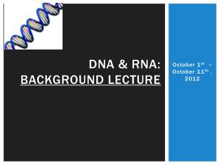 DNA &  rna :  Background lecture