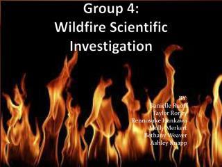 Group 4:  Wildfire Scientific Investigation
