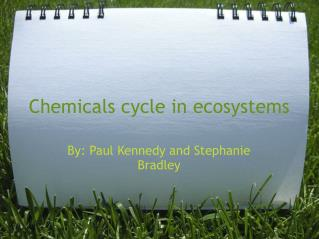 Chemicals cycle in ecosystems