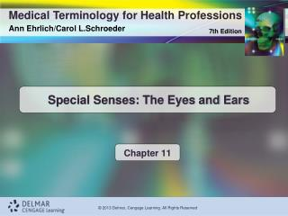 Special Senses: The Eyes and Ears