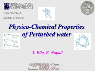 Physico -Chemical  Properties of Perturbed  water
