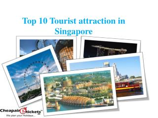 Top 10 Tourist attraction in Singapore