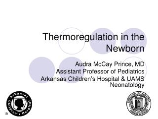 Thermoregulation in the Newborn