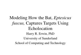Modeling How the Bat,  Eptesicus fuscus,  Captures Targets Using Echolocation