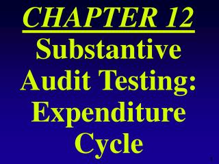 CHAPTER 12 Substantive Audit Testing: Expenditure Cycle