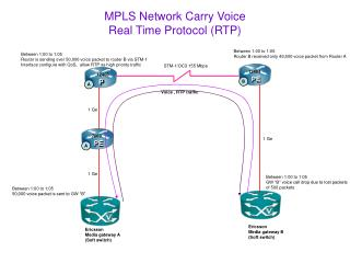 MPLS Network Carry Voice Real Time Protocol (RTP)