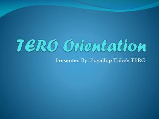 TERO Orientation