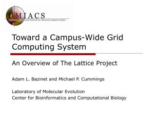 Toward a Campus-Wide Grid Computing System