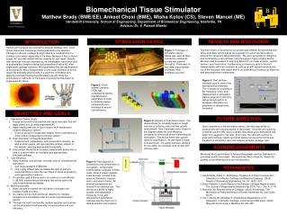 Biomechanical Tissue Stimulator