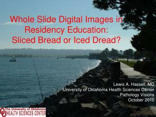 Whole Slide Digital Images in Residency Education: Sliced Bread or Iced Dread?