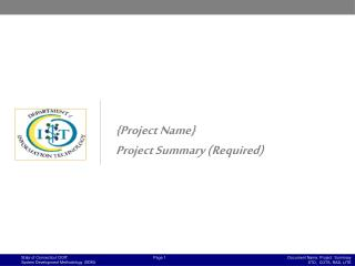 {Project Name}  Project Summary (Required)