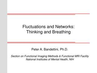 Fluctuations and Networks:  Thinking and Breathing