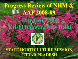 17th April, 2008 Krishi Bhawan, New Delhi STATE HORTICULTURE MISSION, UTTAR PRADESH