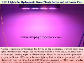 LED Lights for Hydroponic Grow Plants Better and At A Lower