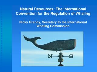 Natural Resources: The International Convention for the Regulation of Whaling  Nicky Grandy, Secretary to the Internatio