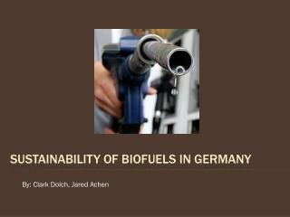 Sustainability of Biofuels in Germany