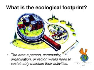 What is the ecological footprint?