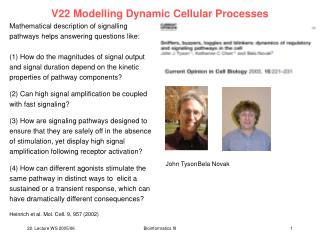 V22 Modelling Dynamic Cellular Processes