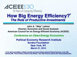 How Big Energy Efficiency?