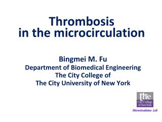 Thrombosis  in the microcirculation
