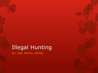 Illegal Hunting
