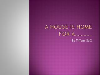 A house is home for a………..