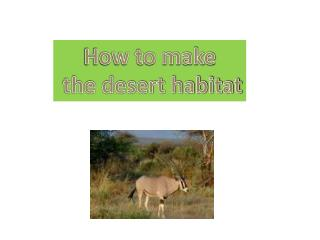 How to make  the desert habitat
