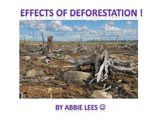 EFFECTS OF DEFORESTATION !