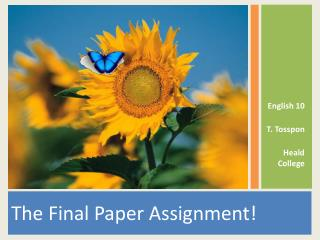 The Final Paper Assignment!