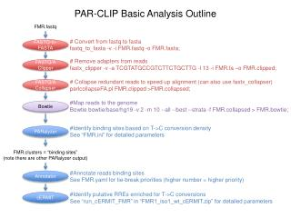 PAR-CLIP Basic Analysis Outline