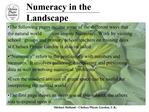 Numeracy in the Landscape