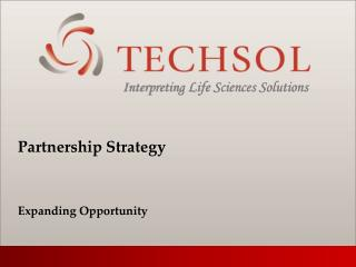 Partnership Strategy