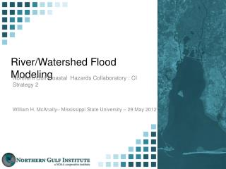 River/Watershed Flood Modeling