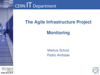 The Agile Infrastructure Project Monitoring