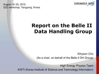 Report on the Belle II  Data Handling Group