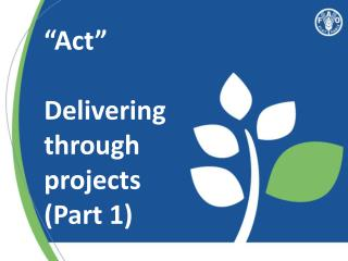 """Act"" Delivering through projects  (Part 1)"