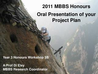 2011 MBBS Honours  Oral Presentation of your Project Plan