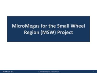 MicroMegas for the Small Wheel Region (MSW) Project
