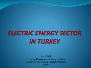 ELECTRIC ENERGY SECTOR IN TURKEY