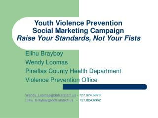 Youth Violence Prevention  Social Marketing Campaign Raise Your Standards, Not Your Fists