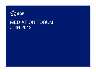 MEDIATION FORUM  JUIN 2013