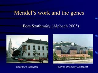 Mendel's work and the genes