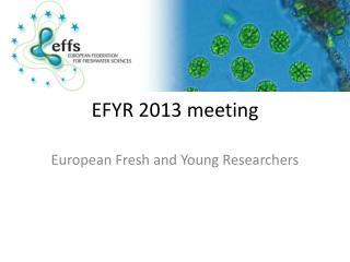 EFYR 2013 meeting