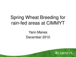 Spring Wheat Breeding for rain-fed areas at CIMMYT