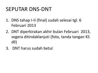 SEPUTAR DNS-DNT