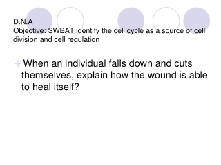 D.N.A Objective: SWBAT identify the cell cycle as a source of cell division and cell regulation