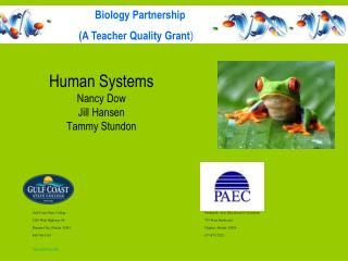 Human Systems Nancy Dow Jill Hansen Tammy Stundon