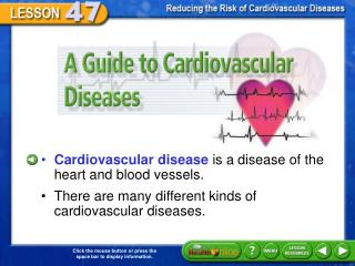 A Guide to Cardiovascular Diseases