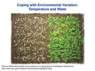 Coping with Environmental Variation: Temperature and Water