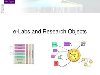 e-Labs and Research Objects